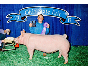Congrats-to-Cooper-Stambaugh--1st-Place-Showmanship-and-3rd-Place-Yorkshire-Barrow